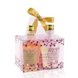Coffret LOVEPLAY, huiles de massage comestibles